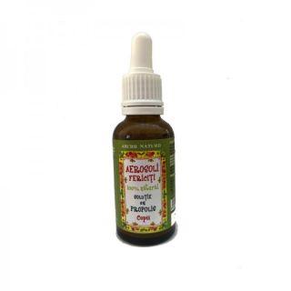 Solutie propolis pentru aerosoli Aburii Naturii 30 ml