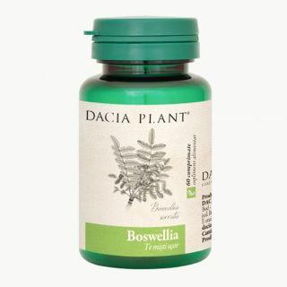 Boswellia Dacia Plant 60 comprimate